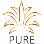 Pure Hospitality Solutions Inc. Stock Price - PNOW
